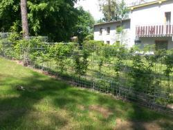 jezirka-zahrady-3
