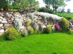 jezirka-zahrady-8