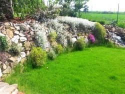 jezirka-zahrady-51